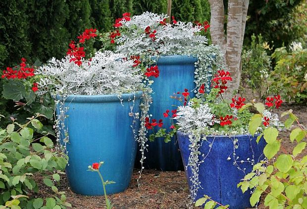 one simple diy backyard idea is adding a variety of colors