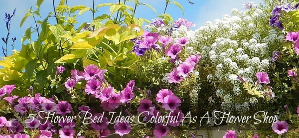 5 Flower Bed Ideas Colorful As A Flower Shop