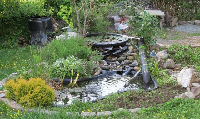 Garden rocks for a backyard pond