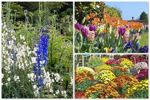 simple flower bed ideas with spring summer fall