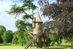 Let´s Get Off The Ground – Tree House Designs For Kids