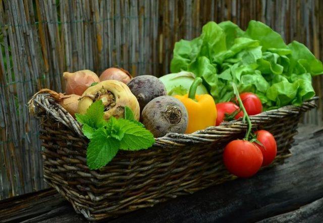garden basket with vegetables